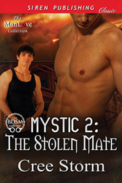 The Stolen Mate, by Cree Storm